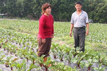 賴坤信夫妻