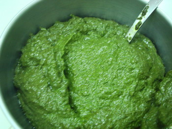 11232007a-219greensaucedone.jpg