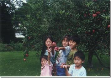 105有蘋果的樹