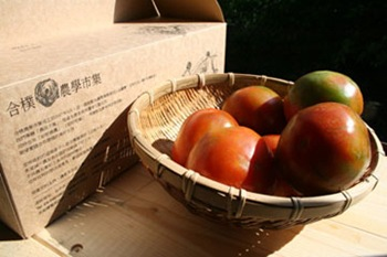 980313-tomatohope-360