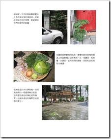設計一做綠色城市_頁面_03
