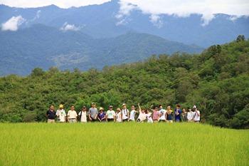 rice [1600x1200]